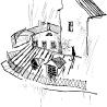 Дриго Е.Ю. «На крыше», из серии «Городские животные»