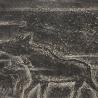 Бирюков М. Из серии «Копии древнего наскального искусства»