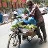 Игорь (Sinus) Соколов. «Непал — Индия — Пакистан»